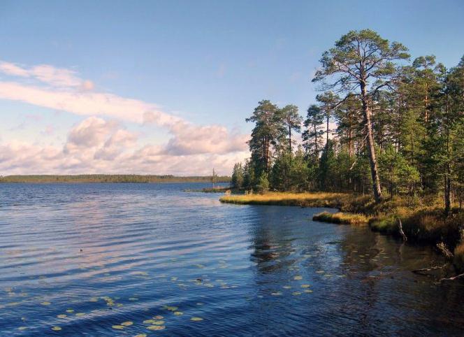 Белое озеро, Вологодская область