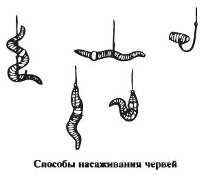 Способы насаживания червя