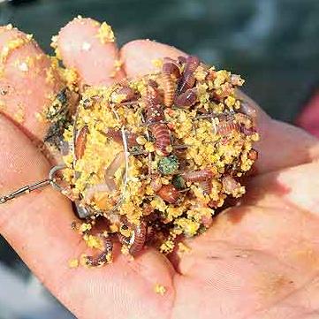 Фидерная грузкормушка с кормом