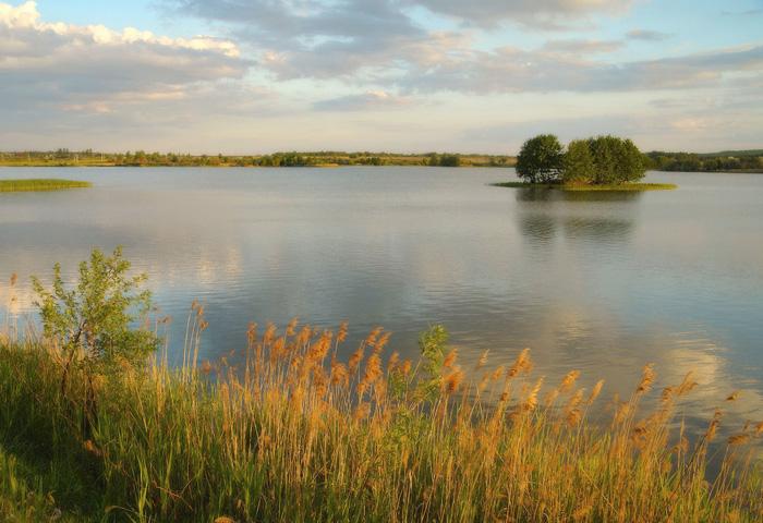Курское водохранилище