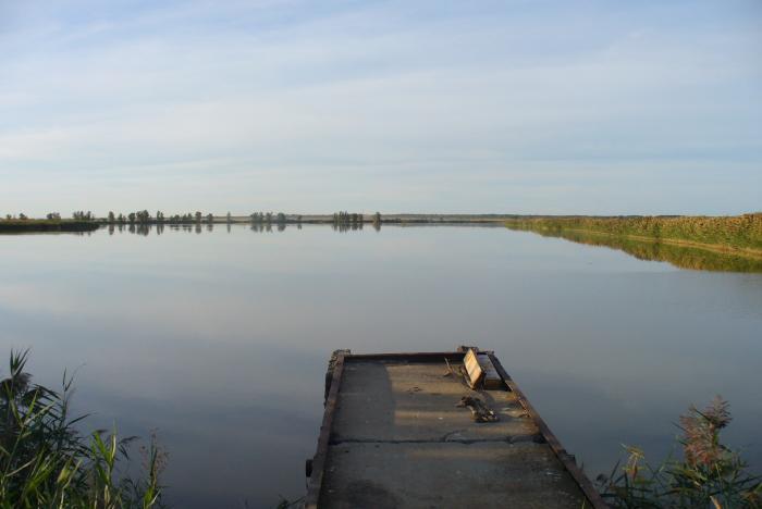 Нагульный пруд