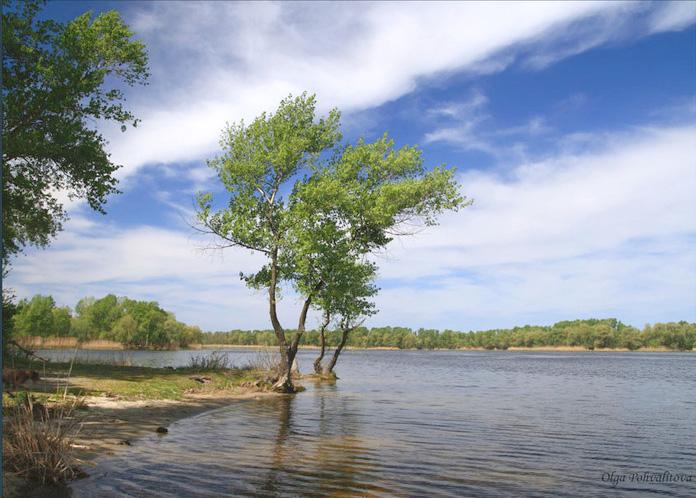 Ветер на реке